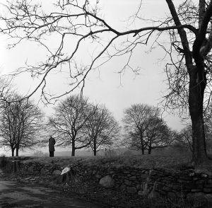 Solitude, Italian Countryside. 1957