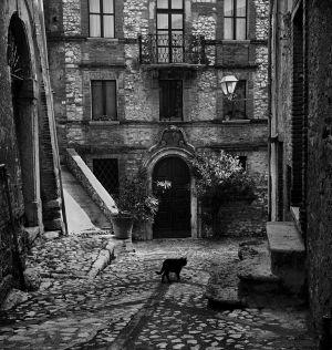 Black Cat in Labro, Italy. 1961